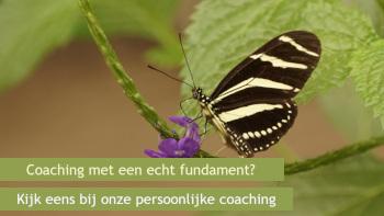 Pastorale coaching